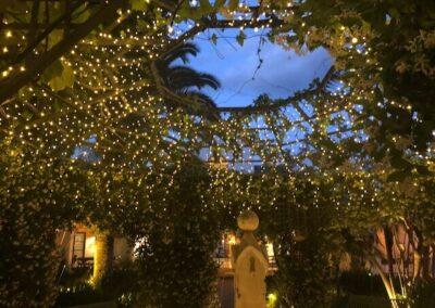 Gardengigs-Chelsea-Flower-Show-Flower-Dome