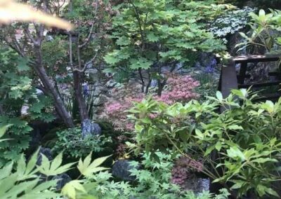 Gardengigs-Chelsea-Flower-Show-Shrubs