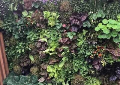 Gardengigs-URBAN-FLOW-Chelsea-Flower-Show-Vertical-Gardening