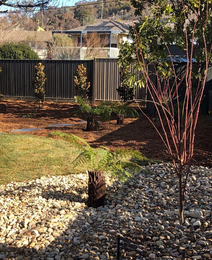 Gardengigs Garden Landscape Construction Canberra Services - Garden Construction in Progress with Tree Plant