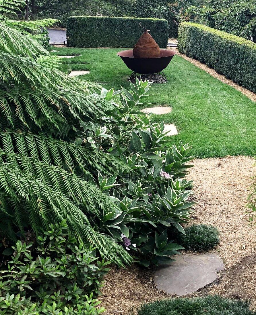 Gardengigs Garden Landscape Design Latest Work - Lush and Blooming Garden Green